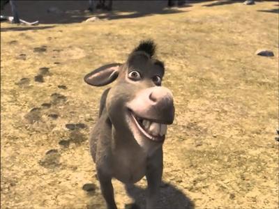 s donkey